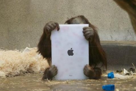 Ape tablet