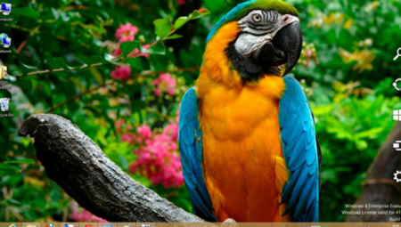Parrotstheme