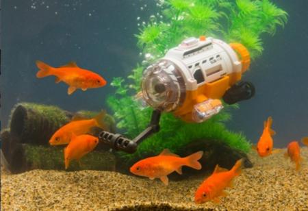Goldfishcamer