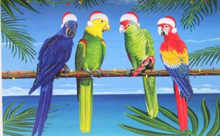 Xmas parrots