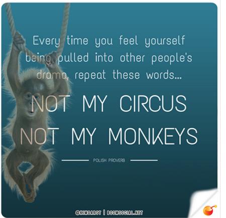 Circusmonkeys