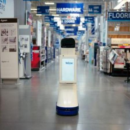 Lowesrobot