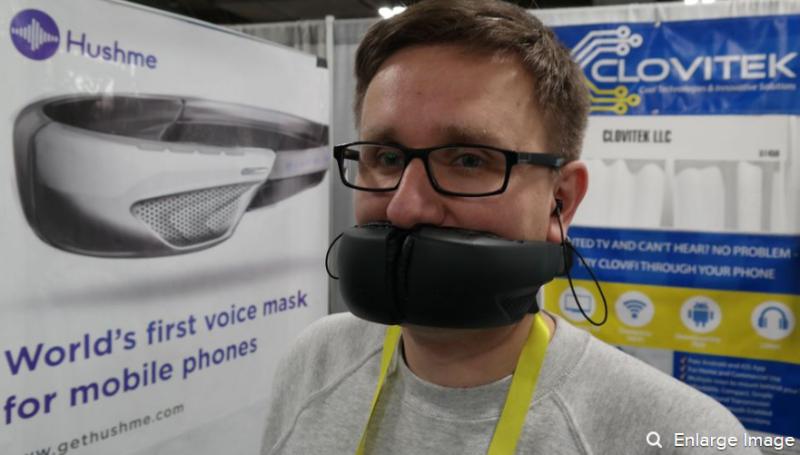 Voicemask