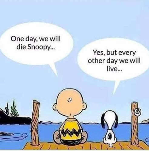 Snoopystoic