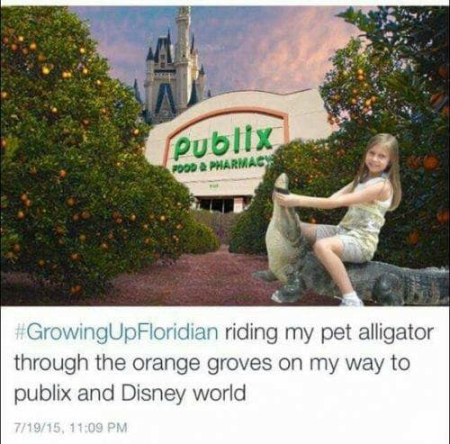 Floridawinter