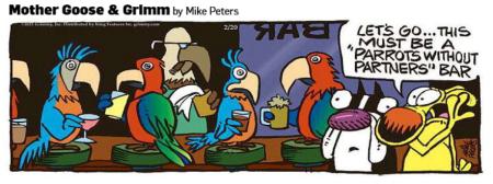 Parrotswithoutpartners