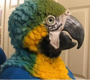 Blueandgoldmask