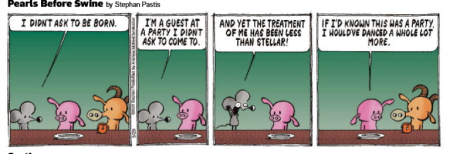 Pigdance