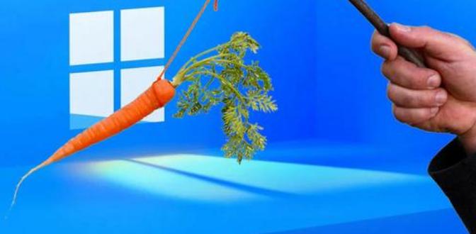 Windows11carrot